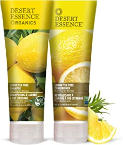 Desert Essence Lemon Tea Tree Shampoo & Conditioner Bundle - 8 Fl Ounce - Clarifying For Oily Hair - Essential Oils - Strengthen & Protect Hair - Effective Cleansing