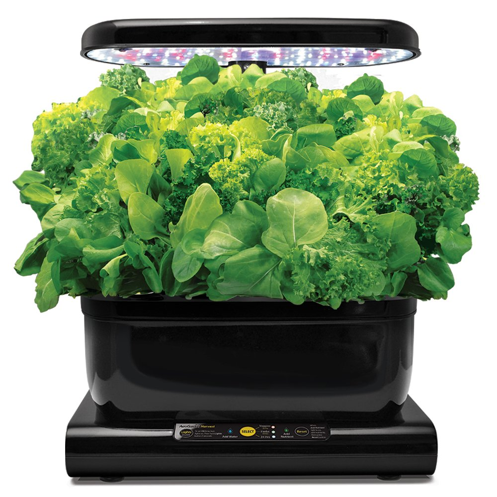 Herb Kits For Indoors: AeroGarden Hydroponic Indoor Herb Garden Salad Greens Seed