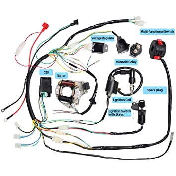 CISNO Complete Electrics Stator Coil CDI Wiring Harness for 4 Stroke on