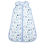 aden by aden + anais sleeping bag, dinos, Small 0-6 Months (1 Sleeping Bag)