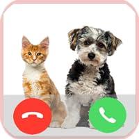 Fake Call from Pet Prank