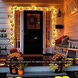 GIGALUMI Halloween Pumpkin String Lights 20 LEDs