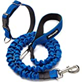 Pet Leash Dog Rope Telescopic Type Wear-Resistant and Firm Outdoor Strong Safety Easy to Use for Walking The Dog (L, Royal -B