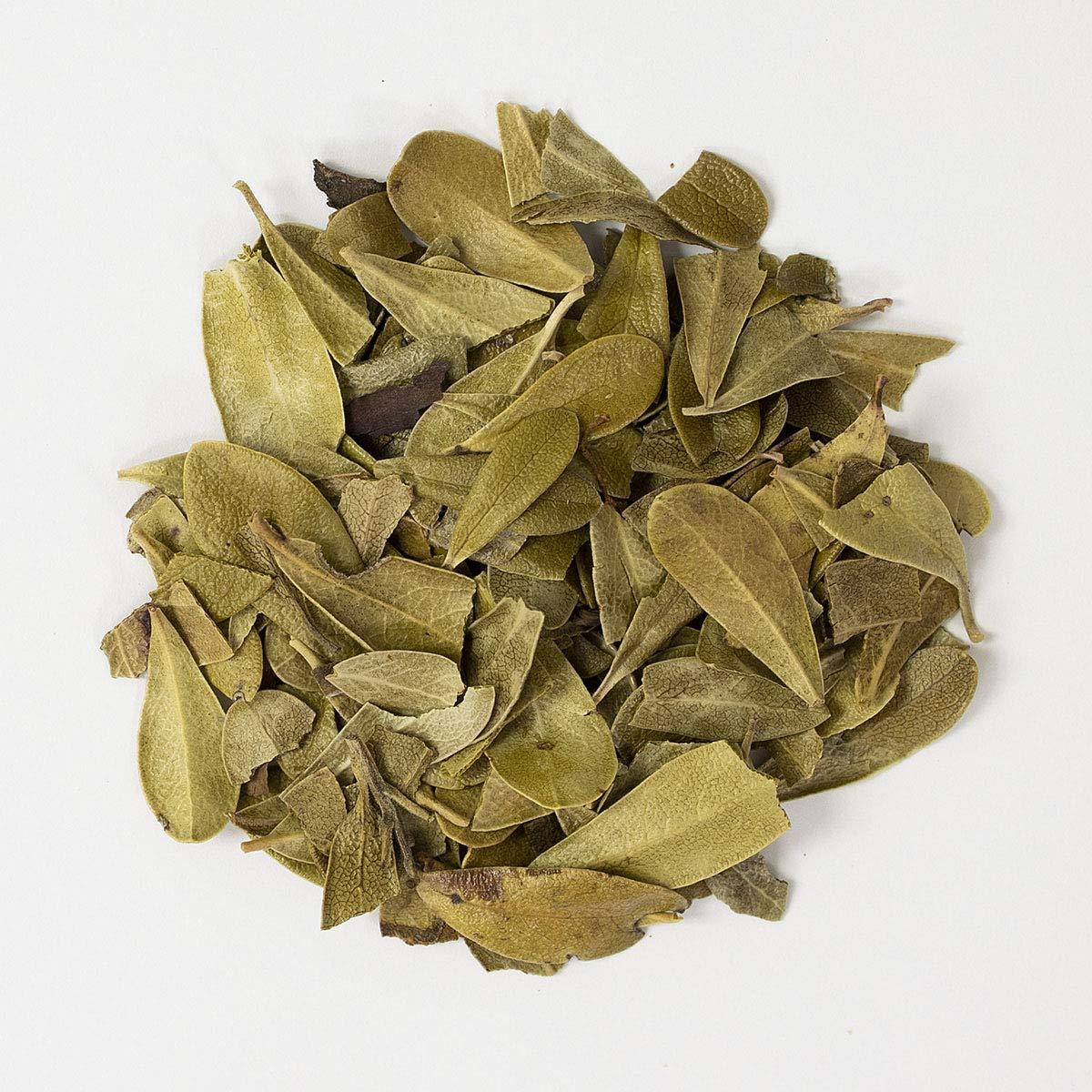 Frontier Co-op Uva Ursi Leaf Whole, Kosher, Non-irradiated | 1 lb. Bulk Bag | Arctostaphylos uva-ursi (L.) Spreng.