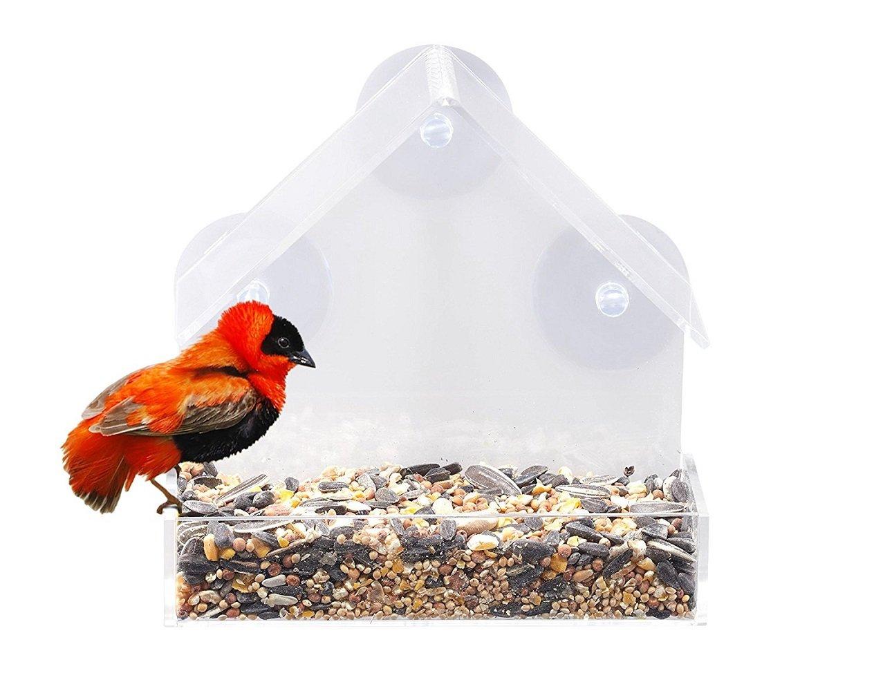 D & & R Window Mangeoire à oiseaux, acrylique Clair support fenêtre facile à nettoyer et à remplir Jardin Patio accessoire de décoration avec 3ventouses, 15,2x 6,3x 15,2cm, un cadeau idéal pour les amateurs de Bird D&&R