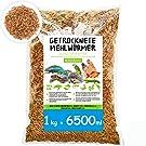 SHF-Natur Mehlwürmer getrocknet • 1kg (entspricht 6,5 Litern!) Premium Futter • Wildvogelfutter • der gesunde und natürliche Snack für Fische, Vögel, Reptilien, Schildkröten und Igel