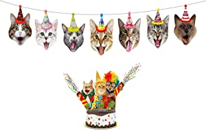 Birthday Cat Garland by Gyzone, Funny Photographic Cat Faces Birthday Banner, Kitties Bday Party Bunting Decoration