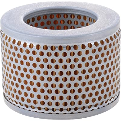 Luber-finer LAF8820 Heavy Duty Air Filter: Automotive