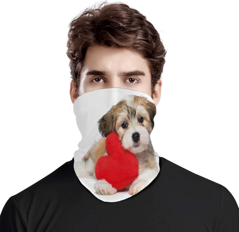 FULIYA Bufanda de cabeza variada, amante de San Valentín perro habanés cachorro con un corazón rojo Día de San Valentín Tema, para exteriores, festivales, deportes