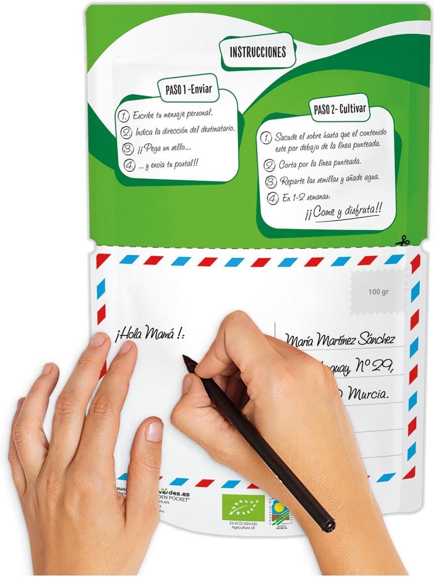 HOLA - Brotes ecológicos Mostaza - CARTA POSTAL - Postal para escribir tu mensaje personal, añadir un sello y enviar al destinatario. La postal es una maceta de brotes germinados 100% ecológicos.: Amazon.es: Jardín
