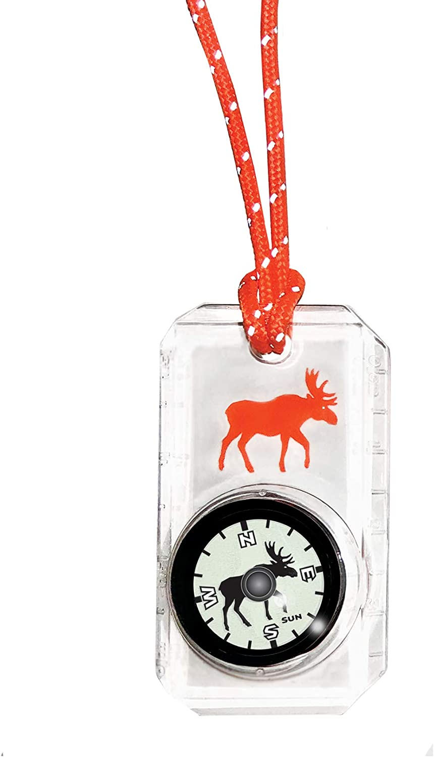 Break-Away Neon Lanyard Hiking and Exploring Orange Bear Childrens Compass for Camping Sun Company Wildlife Compass for Kids