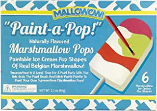 product image for Marshmallow Lollipop DIY Kit |Includes Everything| Great at home craft
