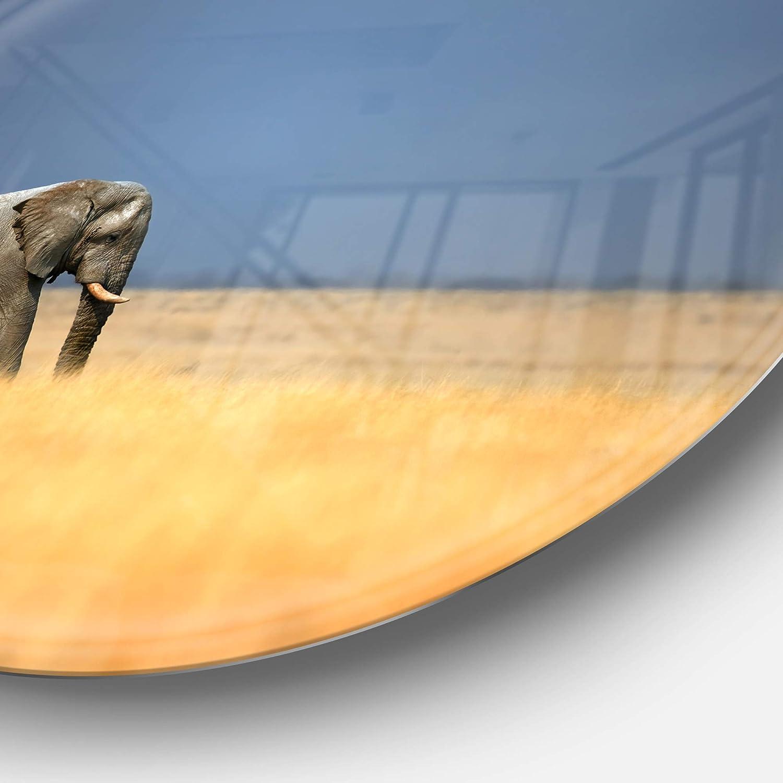 Disc of 23 inch 23X23-Disc Designart MT12899-C23 Metal Artwork Brown