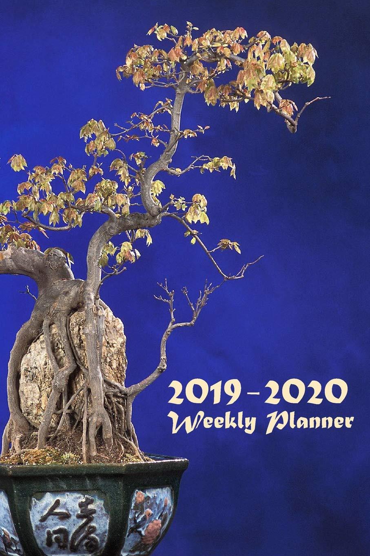 2019 - 2020 Weekly Planner: Weekly Organizer & Scheduling ...