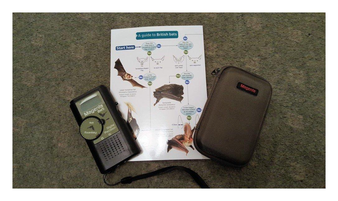 Magenta Fledermausdetektor inklusive Schutzhülle mit Reißverschluss und Leitfaden Britisch Bats (in englischer Sprache)