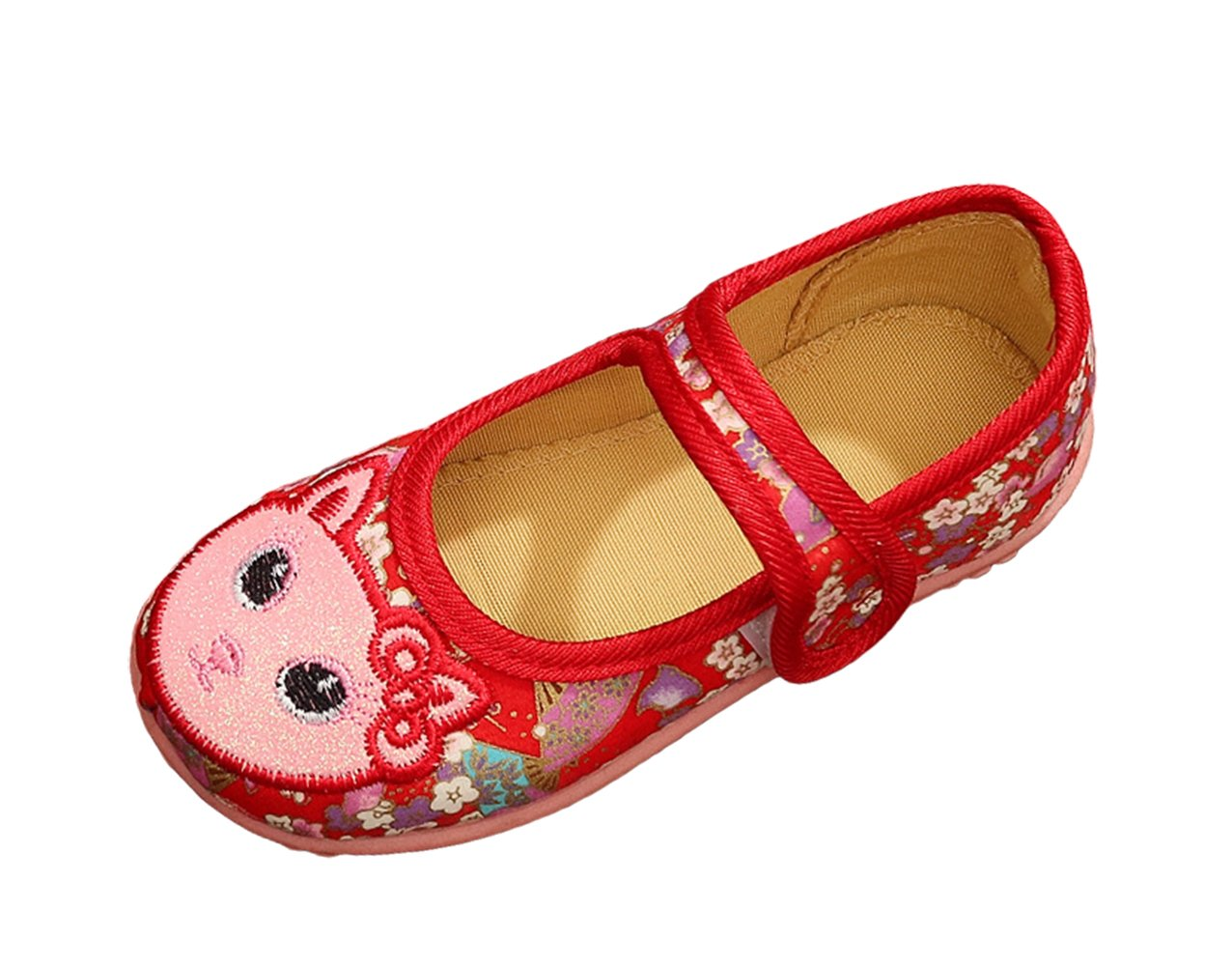 AvaCostume Girls Cat Embroidery Golden Stroke Pattern Cute Dress Shoes, Red 29