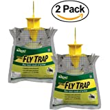 RESCUE!! Non-Toxic Disposable Fly Trap, 2 Pack