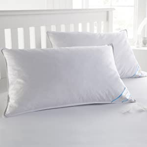 """Sweet Home Collection Goose Down and Feather Bed Pillow 2 Pack - Soft and Comfortable Quality Bedding 20"""" x 30"""", Queen"""