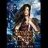 Raven's Journey (Paradox Stone Book 1)