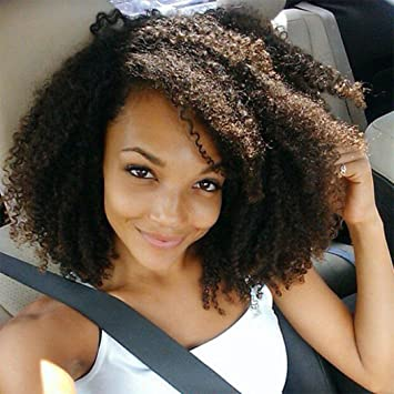 Luwigs Full Lace Wig African American Afro Kinky Curly Human Virgin Hair  for Black Women Natural 3bb87883d7