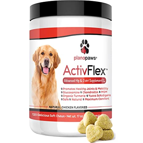 Glucosamin & Chondroitin für Hüftdysplasie & Arthritis bei Hunden