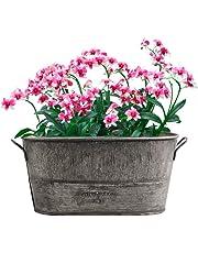Lembeauty Retro Hierro Maceta de Flores para Interior y Exterior de Mesa jarrón Plantas Grasas jarrón