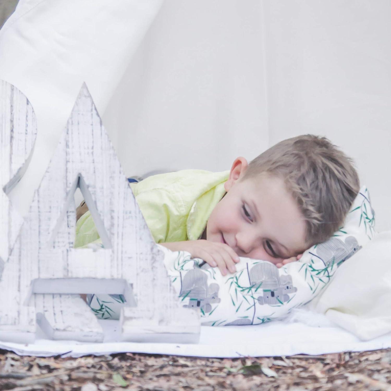 Zack /& Ali Toddler Pillows Mint Dot Bundle