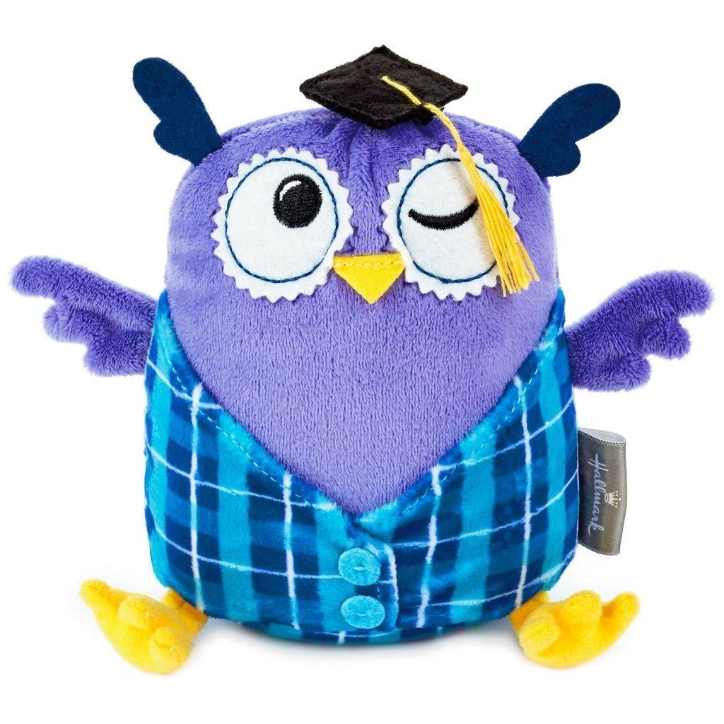 Amazon Com Hm Hallmark Graduation Owl Stuffed Animal Gift Card