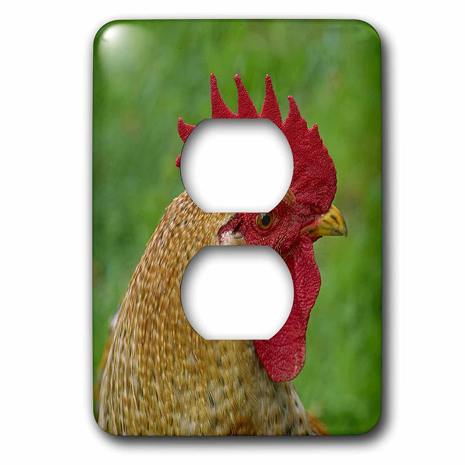 2 Plug Outlet Cover Cock 3dRose lsp/_202409/_6 Animal