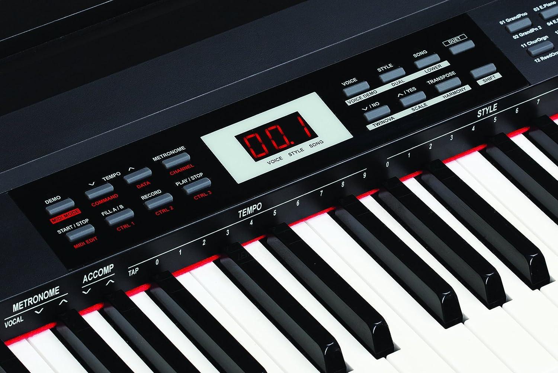 SP Medeli 4000 teclado electrónico con 88 teclas, negro: Amazon.es: Instrumentos musicales