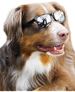 Amazon.com: G006 - Gafas de sol deportivas para perros de ...