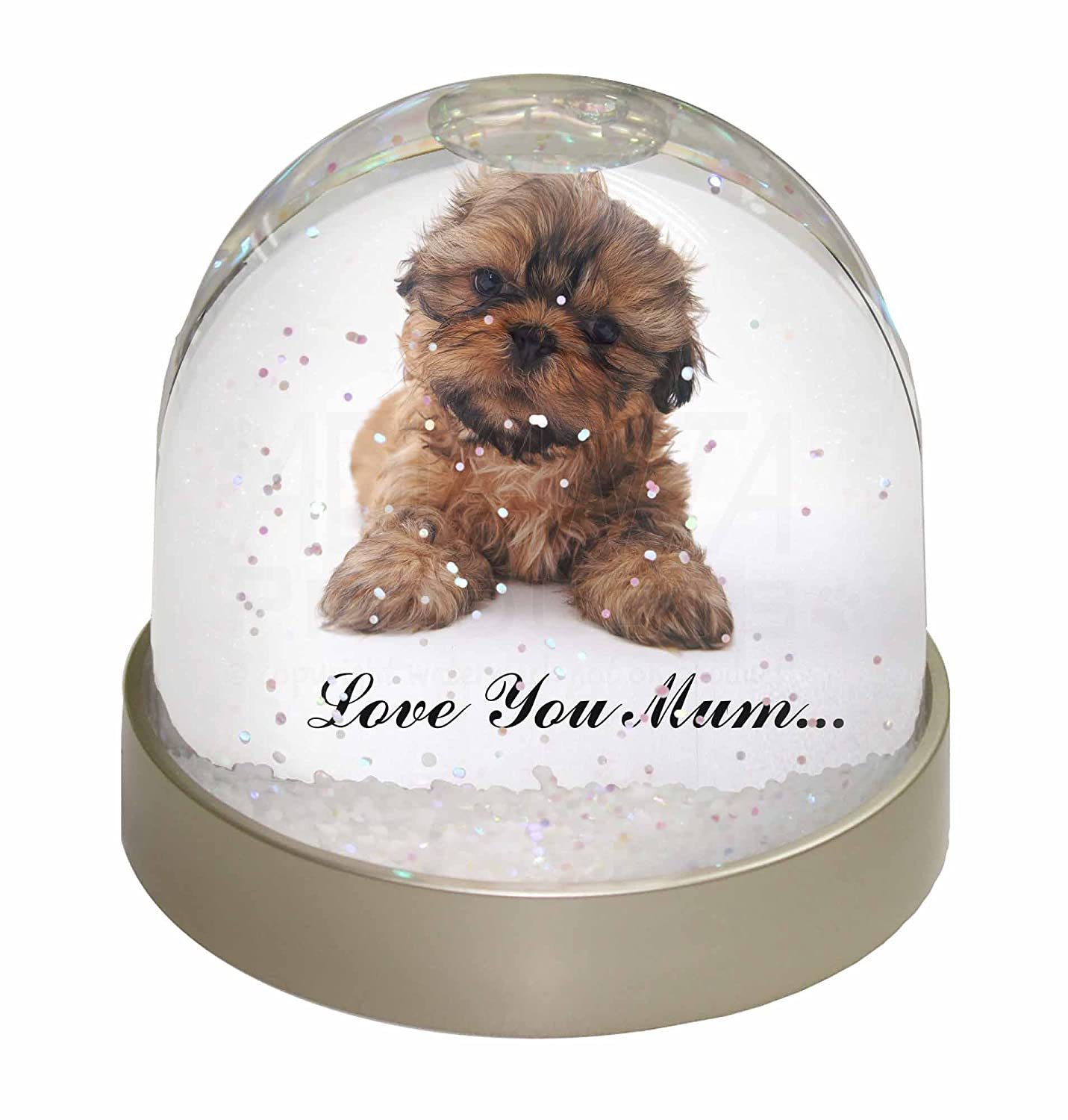 Advanta Shih-Tzu Dog Snow Dome Globe Waterball Gift, Multi-Colour, 9.2 x 9.2 x 8 cm Advanta Products MUM-D12GL
