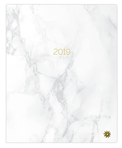 "bloom daily planners 2019 Calendar Year Monthly Planner - Goal Organizer - Monthly Datebook Fashion Agenda - January 2019 Through December 2019-9"" x ..."