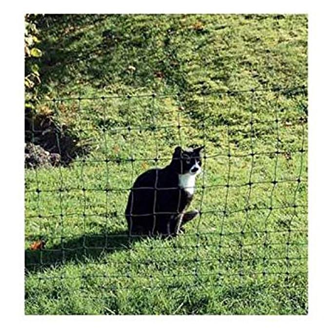 Euro gatos-red 75/1 verde 25 m - 10393: Amazon.es: Productos para mascotas