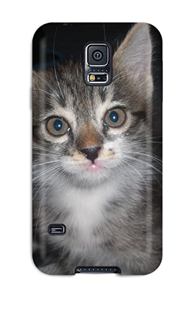 Durable protector funda con gatos persas Hot diseño para Samsung Galaxy S5