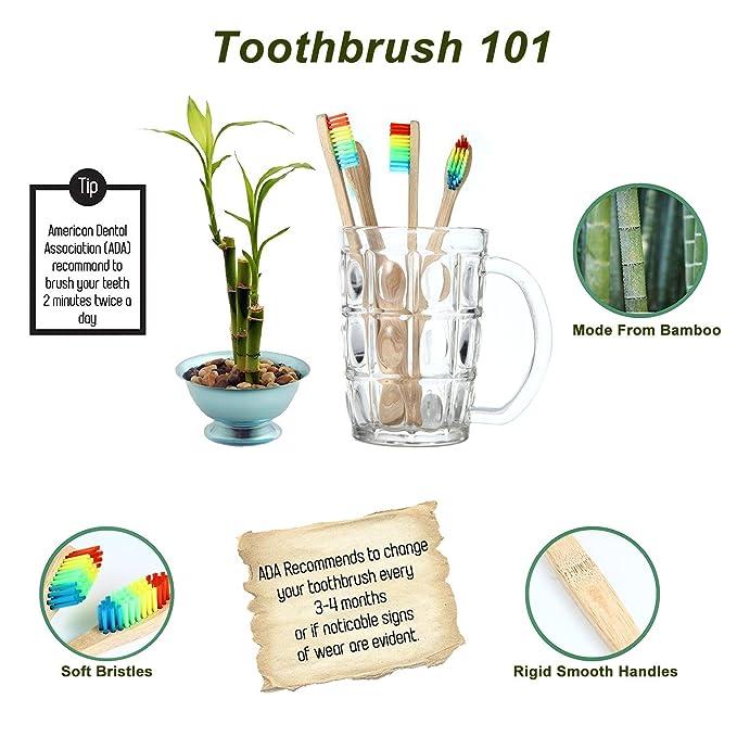 Cepillo de dientes de bambú natural Kobwa, ecológico ...