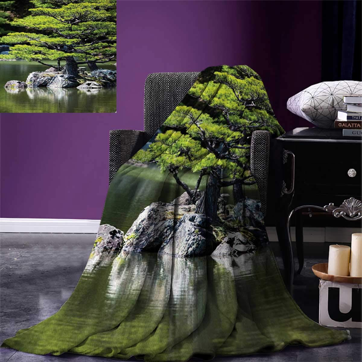 Japanese Digital Printing Blanket Pine Tree in Lake with Stones Japanese Organic Nature Scenery with Asian Garden Theme Summer Quilt Comforter 80''x60'' Green