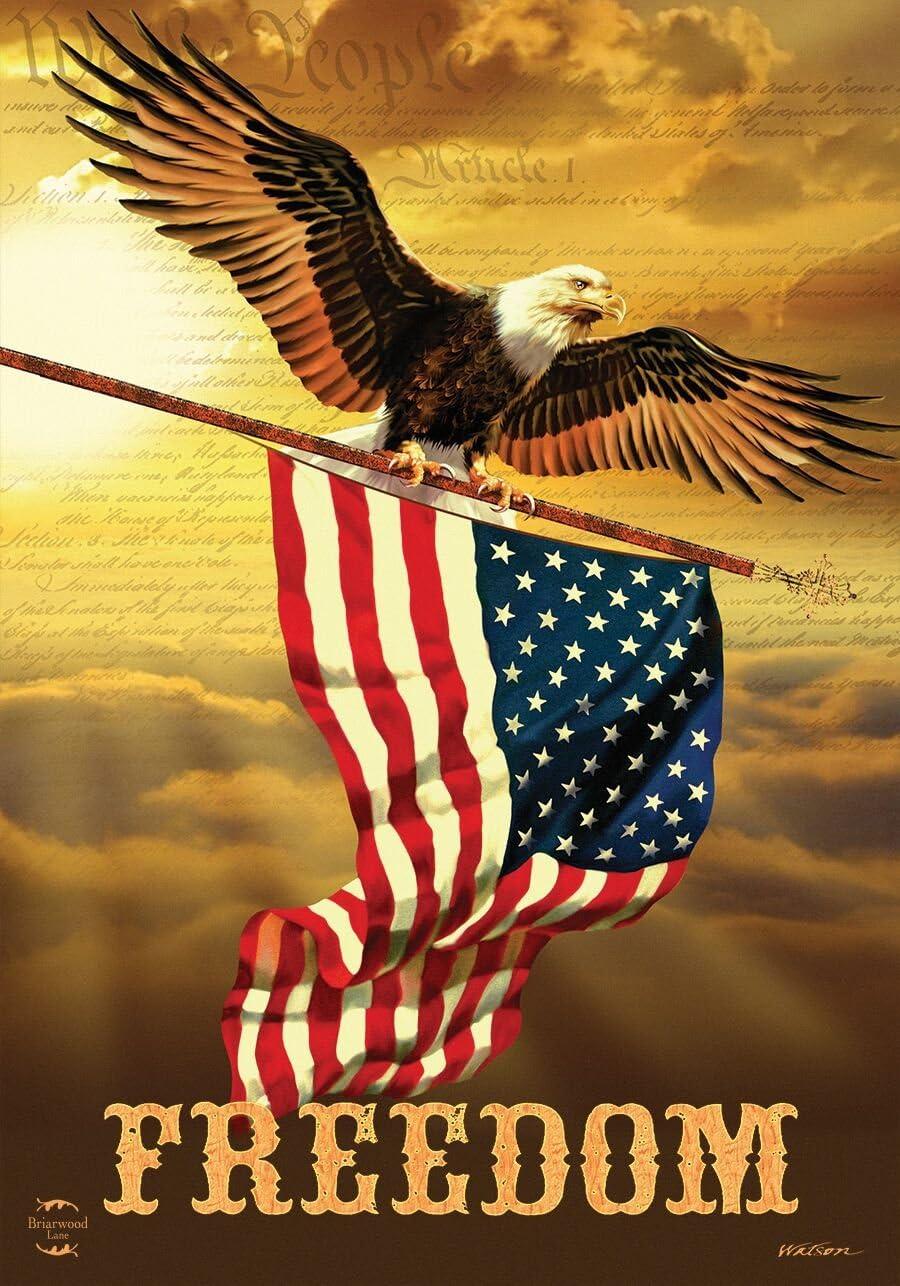 Briarwood Lane Freedom Patriotic Garden Flag Bald Eagle USA 12.5
