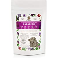 Dr. Harvey's Paradigm Green Superfood Dog Food, Human Grade Dehydrated Grain Free Base Mix for Dogs, Diabetic Low Carb…