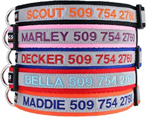 GoTags Reflective Personalized Dog Collar, Custom Embroidered with Pet Name and Phone Number in Blue, Black, Pink, Red and Orange, for Boy and Girl Dogs, 3 Adjustable Sizes, Small, Medium, and Large