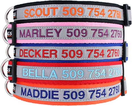GoTags Reflective Personalized Collar