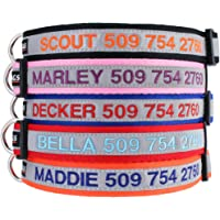 GoTags Reflective Personalized Dog Collar, Custom Embroidered with Pet Name and Phone Number…