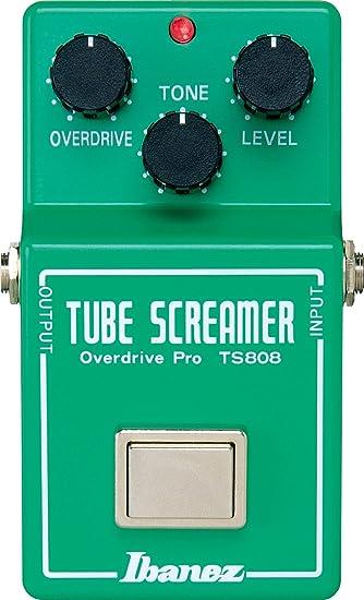 Bbw screamer tube