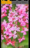 Foton写真作例集003 小山壯二オリジナルピクチャースタイル作例集005 ライトパステル