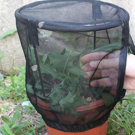 Sanmult Jaula de Visera Plantas, Jaula de Red para Insectos de ...