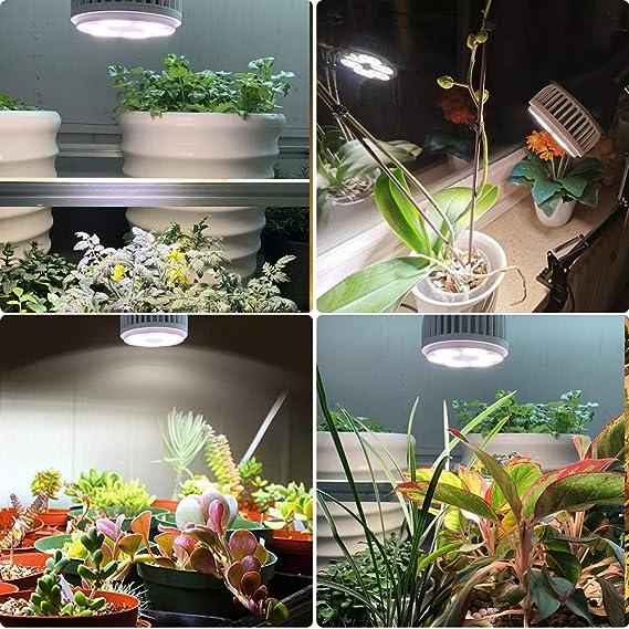 E27 Pflanzen Achstumslampe f/ür Garten Gew/ächshaus /& Hydrokultur Zimmerpflanzen S/ämling Gem/üse MILYN LED Pflanzenlampe 150W Sonnenlicht Vollspektrum Pflanzenlicht LED Grow Light Blumen