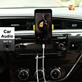 Lightning to 3.5mm Aux Audio Stereo
