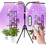 Aogled Grow Light with Stand,50W 5 Head LED Full Spectrum Indoor Plant Lamp with Remote Control,Adjustable Gooseneck,4/8/12H