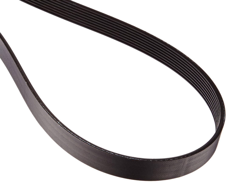 490J taglia J 3//10,2/cm larghezza 8/Rib Gates 490J8/cinghia trapezoidale sezione 124,5/cm lunghezza