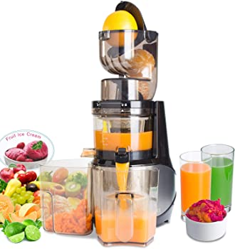 Vitalisci Anti-Oxidation Slow Masticating Juicer